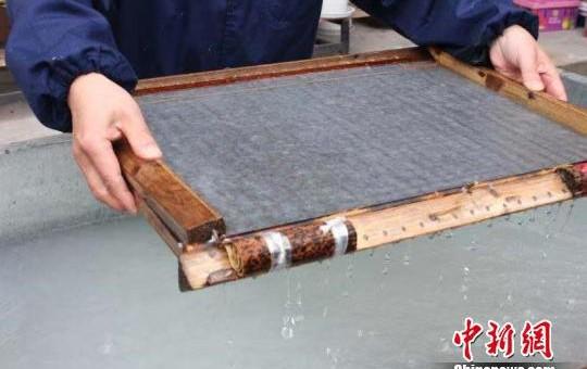 千年竹纸守护者:老祖宗的东西不能丢